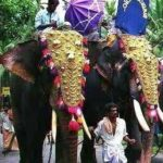 onam-elephantsV2